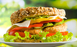Cheese burger on a plate Royalty Free Stock Photos