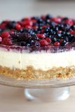 Cheese cake Stock Image