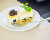 Cheese cake with brownie Stock Images