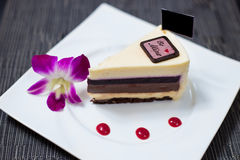 Cheese cake. And Chocolate cake Stock Images