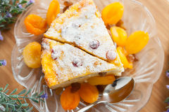 Cheese cake with dried apricot and raisins Royalty Free Stock Image