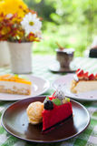 Cheese cake and ice-cream on plate  with fruit topping. Royalty Free Stock Photo