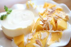 Cheese cake with mango. In close up stock image