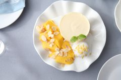 Cheese cake with mango. On a plate royalty free stock photo