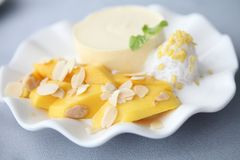 Cheese cake with mango, Dessert. Cheese cake with mango on a plate royalty free stock photos
