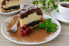 Cheese cake with poppy filling Stock Image