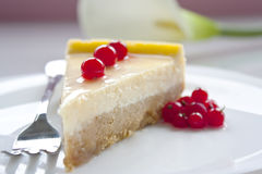 Cheese cake with red currant. On a white plate royalty free stock images