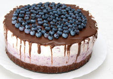 Cheese Cake With Blueberries Royalty Free Stock Image