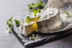 Cheese camambert from oregano herbs on slate board stock image