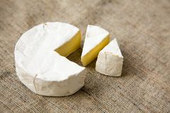 Cheese camembert or brie on rustic background. Milk production. Closeup royalty free stock images