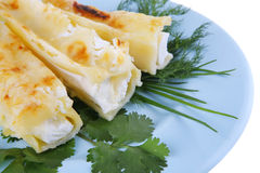 Cheese cannelloni on blue plate Royalty Free Stock Photo