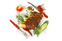 Cheese cannelloni served Royalty Free Stock Photography