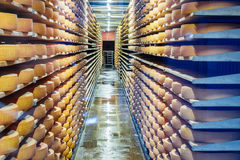Gruyere cheese matures at the wooden shelfs, Gruyeres, Switzerland. Stock Photos