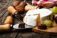 Cheese closeup Royalty Free Stock Image