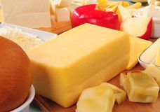 Cheese collection. Variety of cheese from goat and cow milk Royalty Free Stock Image