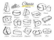 Cheese collection Vector hand drawn illustration of cheese types Royalty Free Stock Photography