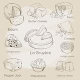 Cheese collection. Vector hand drawn illustration of cheese types Stock Photos