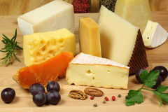 Cheese composition Royalty Free Stock Photos