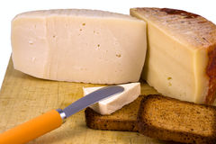 Cheese composition rich and healthy Royalty Free Stock Images