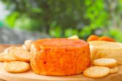 Cheese with cookies Stock Photos