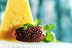 Cheese and corn Stock Photography
