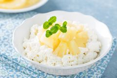 Cheese cottage dessert, curd with pineapple and yogurt Stock Photography