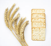 Cheese crackers or biscuits and ears of wheat  on white Stock Photos