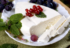 Cheese with currant Stock Photography