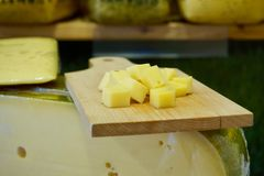 Cheese cutting board with Dutch cheese cubes on top of a cheese wheel block royalty free stock images