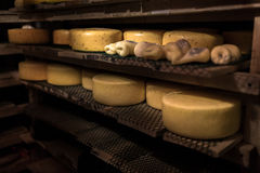 Cheese at the dairy, cheese is ripen on racks. Cheese at the dairy, cheese is ripen on wood racks Stock Photo