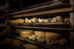 Cheese at the dairy, cheese is ripen on racks. Cheese at the dairy, cheese is ripen on wood racks Stock Photography