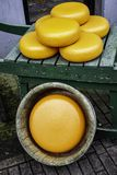 Cheese in edam stock images