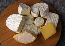 Cheese of eight different varieties Royalty Free Stock Image