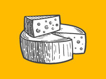 Cheese engraving style vector illustration Stock Photos