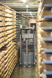 Cheese factory in Gruyères, Switzerland Stock Image