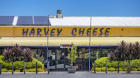 Cheese Factory in Western Australia. Cheese factory making the following cheeses; soft white Mould, Blue Vein, Washed Rind, Romano, Savoury and Fetta. Here there royalty free stock photography