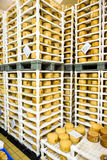 Cheese factory warehouse with shelves stacked with cheese Stock Image