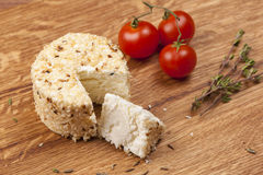 Cheese fantasy. Spices and tomatoes Royalty Free Stock Images