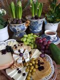 Cheese fest royalty free stock photos