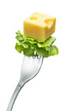 Cheese on a fork. A piece of swiss cheese on a fork with lettuce Royalty Free Stock Image