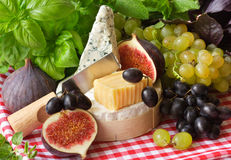 Cheese and fruits. Royalty Free Stock Image