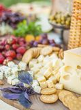 Cheese and fruits on a beautifully vintage decorated table Royalty Free Stock Image