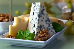 Cheese with fruits Stock Images