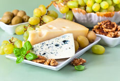 Cheese with fruits Stock Image