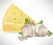 Cheese and garlic Stock Photography