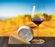 Cheese and glass of wine on nature background royalty free stock photo