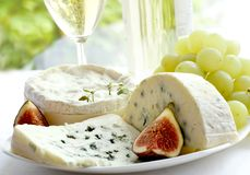 Cheese, grape, figs and wine Stock Photos
