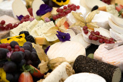Cheese and grapes buffet. Varieties of cheese and grapes buffet Stock Photos