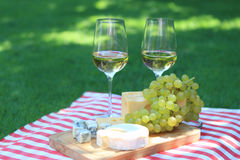 Cheese, grapes and white wine Royalty Free Stock Photos