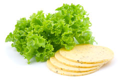 Cheese with green salad lettuce Stock Photos